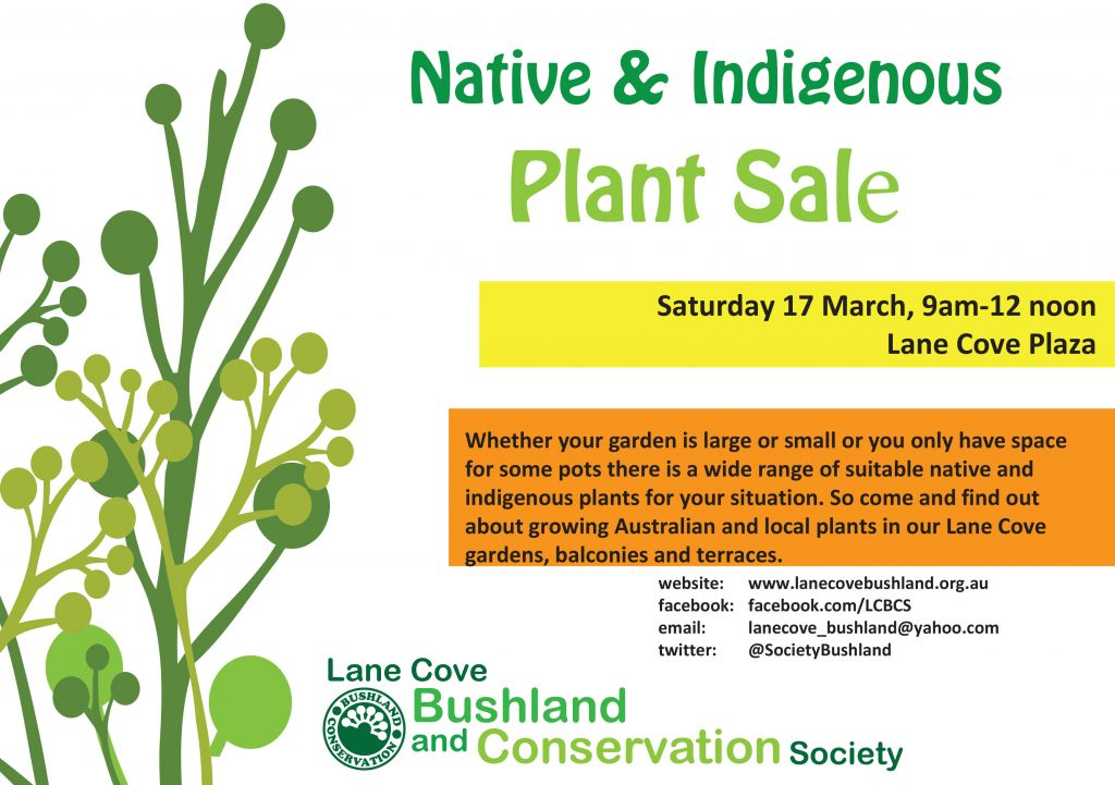 plant stall flyer lane cove
