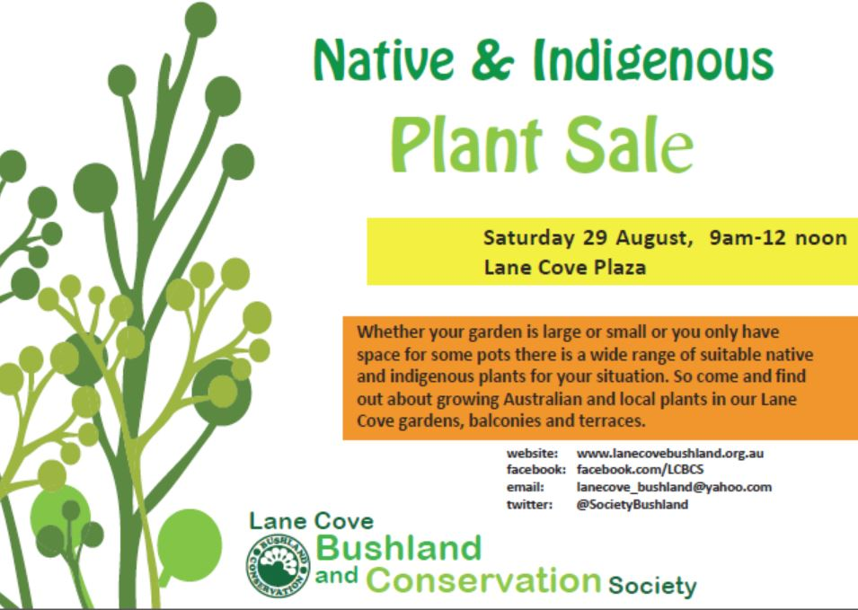 Lane Cove Bushland Society Spring Plant Stall August 2020
